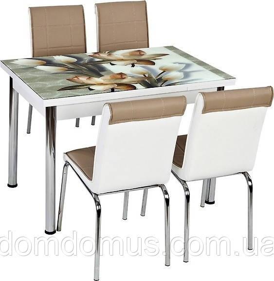 """Комплект обеденной мебели """"Тюльпан"""" (стол ДСП, каленное стекло + 4 стула) Лидер, Турция"""