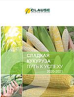 Сладкая кукуруза 2020-2021