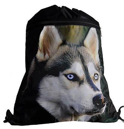 Сумка-рюкзак для сменки на шнурках Хаскі з великою кишенею зпереду Vombato 7863, фото 2