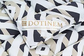 Одеяло DOTINEM VALENCIA ЗИМА холлофайбер евро 195х215 см (214893-14), фото 2