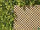 Дерев'яна декоративна решітка — 5R (Вільха, Бук, Клен, Ясень, Дуб), фото 2