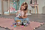 Игровой набор Simba Pamper petz Щенок с сюрпризами (5953050), фото 8