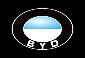 Дефлекторы на боковые стекла (Ветровики) для BYD (БИД)