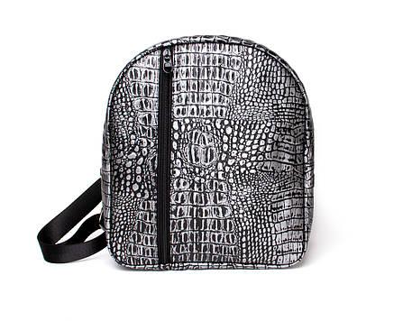Рюкзак Silver Python, фото 2