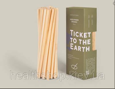 Трубочки з тростини 30 шт в упаковці