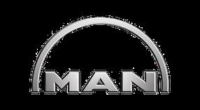 Дефлекторы на боковые стекла (Ветровики) для MAN (МАН)