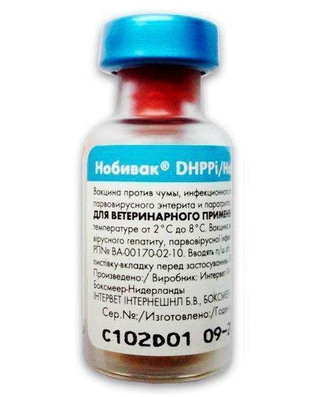 Вакцина Нобивак ДШППи (Nobivac DHPPi) без растворителя, Интервет, 1 доза