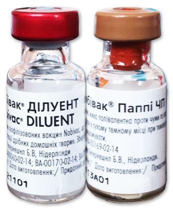 Вакцина Нобивак Паппи ДП (Nobivac Puppy DP) с растворителем, Интервет, 1 доза