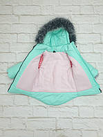 Зимний костюм на девочку, фото 2