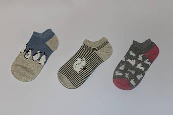 Носки женские заниженные Зоо Размер 34 - 39