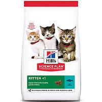 Hills SP Kitten для кошенят, вагітних і годуючих кішок з тунцем 2 кг