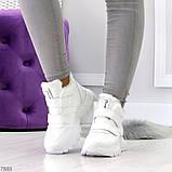 Удобные молодежные белые зимние женские черные кроссовки на липучках, фото 4
