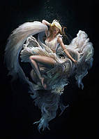 Алмазная вышивка мозаика Чарівний діамант Окрыленная любовью КДИ-1057 70х50 см 17цв Квадратные стразы полная