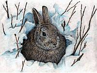 Алмазная вышивка мозаика Чарівний діамант Маленький кролик-2 КДИ-1084 40х30 см 14цв Квадратные стразы полная