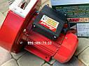 Зернодробилка Могилев МКЗ-240 крупорушка кормоизмельчитель, фото 5