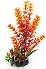 Растение в аквариум 18-20 см Croci FLORA ON PEBBLES искусственное (в ассортименте), фото 4