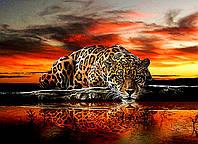 """Алмазная живопись. Набор алмазной вышивки """"Леопард"""". Размер 50*40 см."""