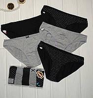 Трусики женские хлопковые набор 5 штук  Dominant Размеры S L
