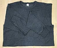 """Комплект мужской  с начесом """"Polat"""". Лонгслив+кальсоны. Серый цвет., фото 1"""