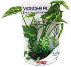 Растение в аквариум 20-25 см Croci Maravilla Serie Planta искусственное (в ассортименте), фото 4