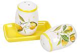 Набор для специй Сочные лимоны Bona Di DM-762-Y, фото 2