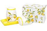 Набор для специй Сочные лимоны Bona Di DM-762-Y, фото 3