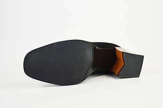 Ботинки на каблуке Lady Marcia 8130 Замша, фото 3