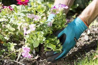 Перчатки для работы с почвой 9/L  | 00207-20.000.00, фото 2