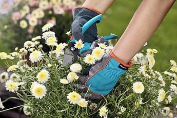 Перчатки садовые 6/XS  | 00201-20.000.00, фото 3
