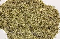 Продаем семена Грястицы (Ежа)