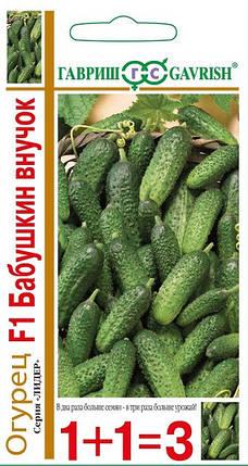 Бабушкин внучок F1 семена огурца 1+1, 20 семян — партенокарпический, ранний (38-43дн.) Гавриш, фото 2