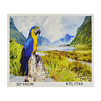 Картина по номерам JIA TU TOY KTL 1744 40 х 30 см
