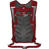 Рюкзак Osprey Daylite Plus 20 Real Red, фото 3