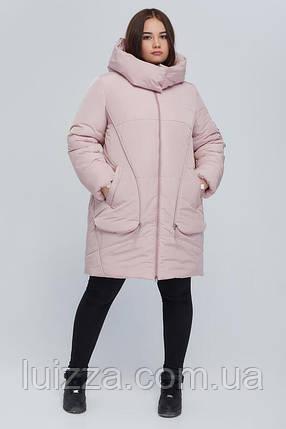 Женская удлиненная куртка  52 - 66 р, пудра, фото 2