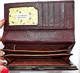 Женский каштановый кошелек из натуральной кожи Tailian на кнопке с монетницей внутри, фото 3