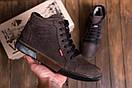 Мужские  зимние кожаные кроссовки  Levis Chocolate Classic (реплика), фото 7