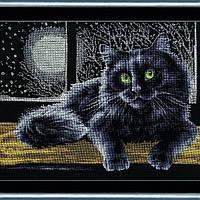 К-009 Черный кот