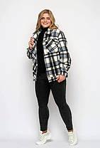 Короткая женская  куртка  в клетку из фланели, цвет чёрно-голубой, больших размеров от 48 до 58, фото 3