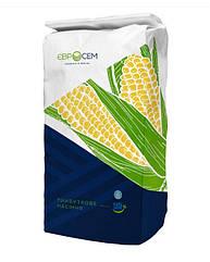 Меган ФАО 250 Евросем (MEGAN) Семена кукурузы