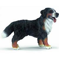Фигурка Schleich Бернская горная собака (16339)