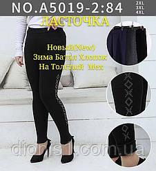 Жіночі лосини ЛАСТІВКА штани з товстим хутром батал бавовна бамбук розмір 2XL 3XL 4XL 12 шт в уп.
