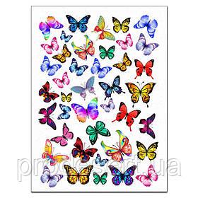 Метелики 1 вафельна картинка