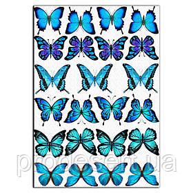 Блакитні метелики вафельна картинка