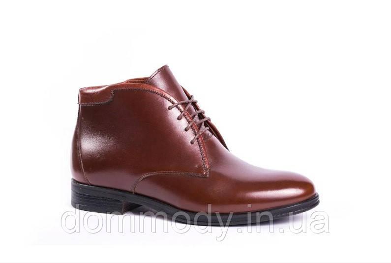 Ботинки мужские из кожи Georgia brown зимние