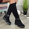 Сапоги женские замшевые на маленьком каблуке. Цвет черный. Батал!, фото 3