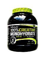 100%  Creatine Monohydrate (1 kg)