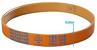 Ремень слайсера TB2-330 / H-16 мм / 7 ручьев (универсальный), фото 1