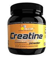 Creatine Monohydrate Powder (550 g)