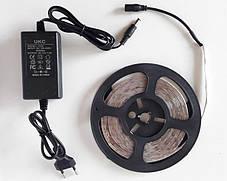 LED Ленты (3528) White длинна 5м + Блок Питания (ВидеоОбзор), фото 2