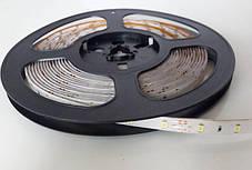 LED Ленты (3528) Yellow длинна 5м + Блок Питания (ВидеоОбзор), фото 3